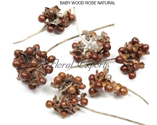 BABY WOOD ROSE NATURAL