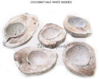 COCOSNUT HALF WHITE WASHED