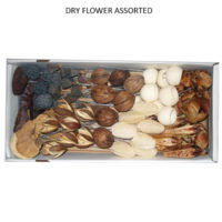 DRY FLOWER ASSORTED