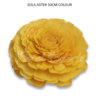 SOLA BELLY 10CM YELLOW