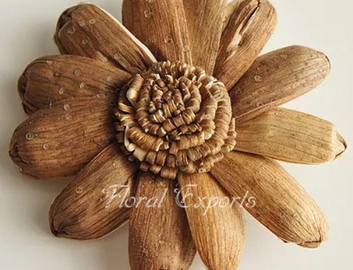 SOLA BARK TRINABH FLOWER – Sola Wood Flowers Suppliers