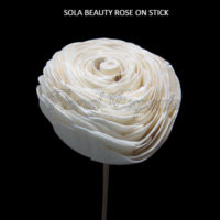 SOLA BEAUTI ROSE ON STICK