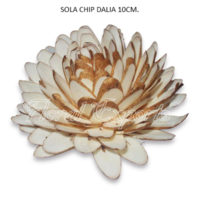 SOLA CHIPS DAHLIA 10CM
