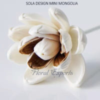 SOLA DESIGN MINI MONGOLIA - Sola Wood Flowers with Stems