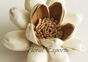 SOLA GLORIA FLOWER - Sola Wood Flowers India