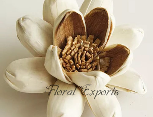 SOLA GLORIA FLOWER – Sola Wood Flowers India