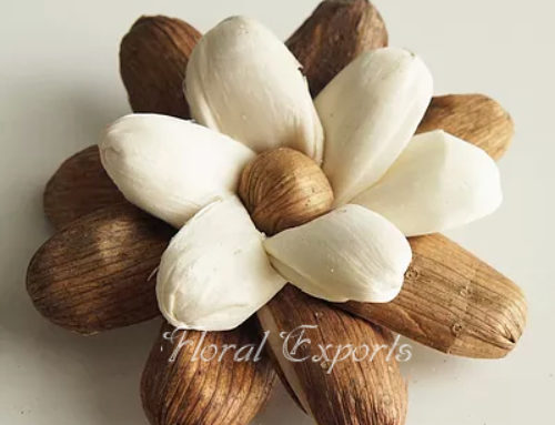 SOLA LOVELY FLOWER – Sola Wood Flowers Wholesale