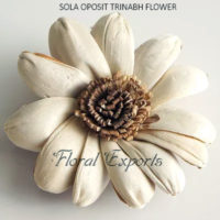 SOLA OPOSIT TRINABH FLOWER - Balsa Wood Flowers with Stems