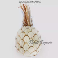 SOLA SLICE PINEAPPLE