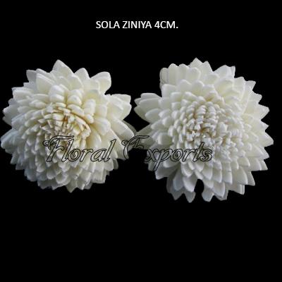 Sola Zinnia 4cm