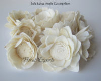Sola Lotus Angle Cutting 6cm