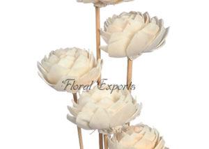 Sola Lotus Type # 2 on Wood Stem