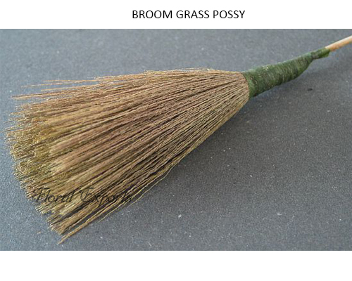 BROOM GRASS POSSY