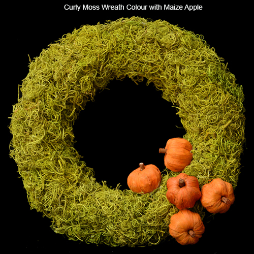 Curly Moss Wreath Colour with Maize Apple