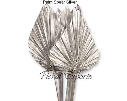 Palm Spear Silver