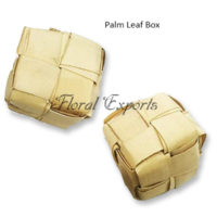 Palm Leaf Box
