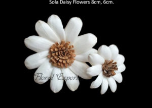 Sola Wood Flowers USA