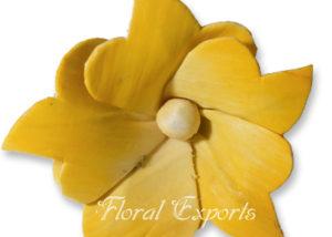 Sola Flowers Design No 88 - Sola Flowers USA