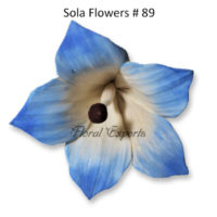 Sola Flowers Design No 89 - Sola Flowers Canada