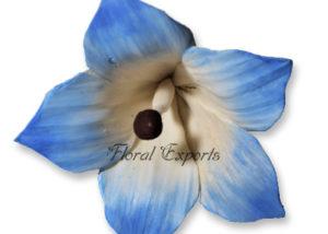Sola Flowers Design No 89 - Sola Flowers Canada