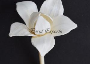 Sola Latali - Sola Flower Diffuser
