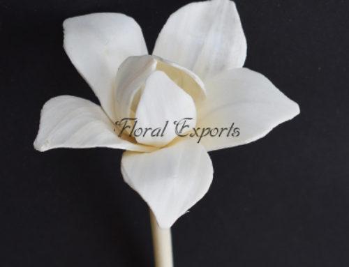 Sola Flower Diffuser
