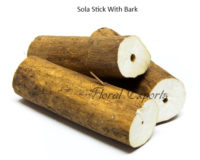 Sola Stick With Bark - Bird toy making parts Canada